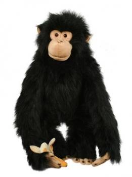 TPC CHIMP Large Primate